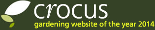 Crocus - gardening website of the
