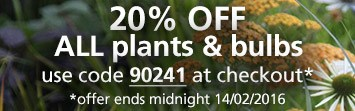 20% off all plants