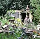 What's your style - Cottage garden