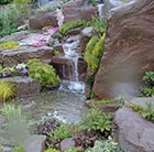 What's your style - water garden