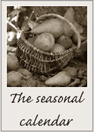 The seasonal calendar
