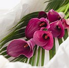 Calla Lily Spray