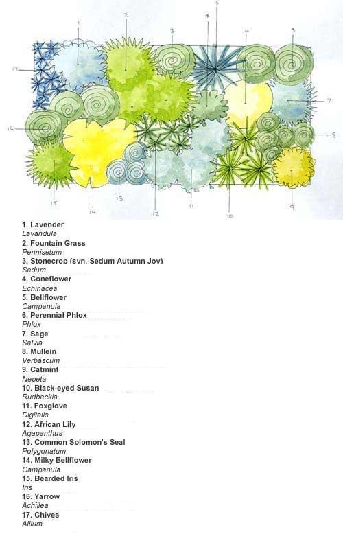 Cottage Garden Planting Plan Uk Pdf