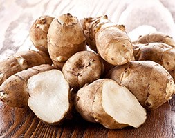 Jerusalem artichoke bulbs