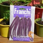climbing French bean Trionfo Violetto