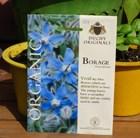 borage - organic