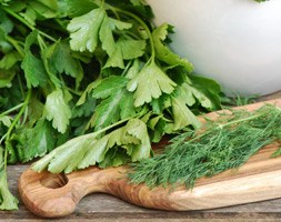 Herb Collection (Herb collection - herb plug plants)
