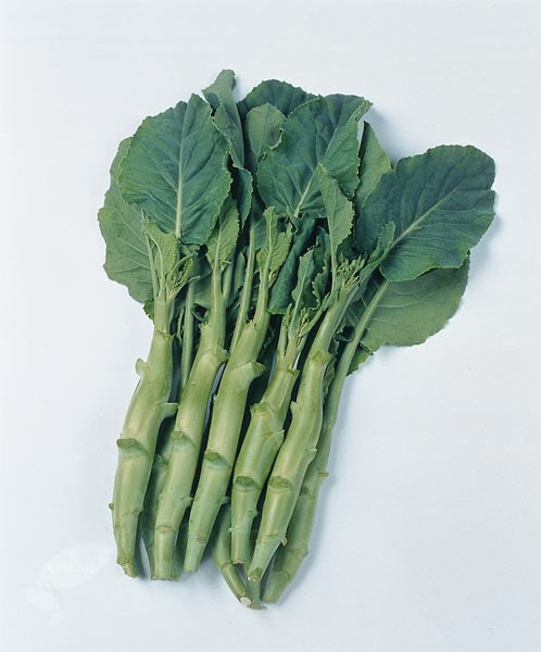 Chinese broccoli ( Kai Ian)