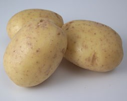 potato 'Vales Emerald' (potato - first early, Scottish basic seed potato)
