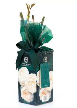 Rose gift Pack 'Lichfield Angel' ('Lichfield Angel' Gift Pack)