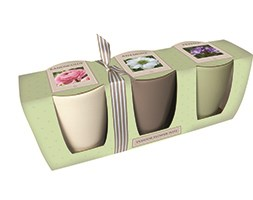 Ceramic windowsill flower gift set (Ceramic windowsill flower gift set)