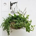 wire-hanging-basket