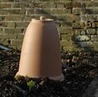 yorkshire-terracotta-rhubarb-forcer