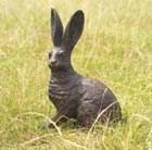 prairie-hare-bronze-hare