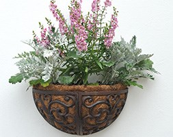 Cast-iron Wall Manger