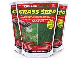 Canada Green Lawn Seed (500g)