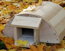 Hedgehog house