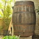 oak-whiskey-barrel-water-butt