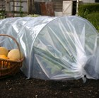 Giant easy polytunnel cloche