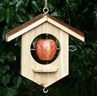 oak-apple-suet-bird-feeder