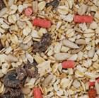 blackbird-food