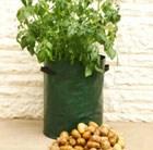 potato-planter-bags-3-pack