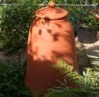 large-rhubarb-forcer