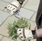 ladies-bionic-gauntlets
