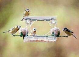 Complete window feeder for birds