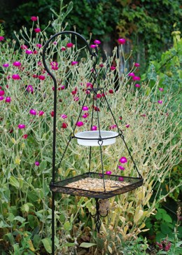 Hanging bird feeding station