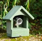 wildlife-surveillance-camera-fsc-timber