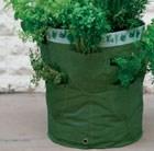 kitchen-herb-patio-planter