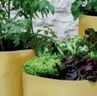 vegetable-patio-planters