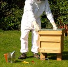 beekeeping-hive-and-accessories-kit