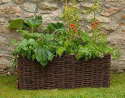 Vegetable planting bag with natural willow Surround