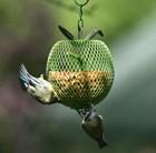 Apple peanut feeder