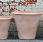 pienza-camellia-pot