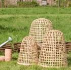 bamboo-bell-cloche