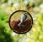 flower-peanut-feeder