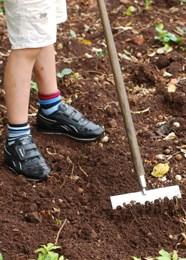 Gardener's apprentice soil rake