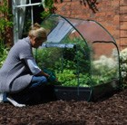 pop-up-cloche-cover-for-grow-bed