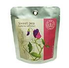 Sweet pea - pocket garden