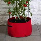 tomato-climbing-patio-planter