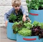 vegetable-patio-planter