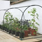 Grower frame