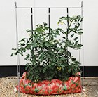 The grow-bag frame