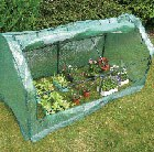 seedling-growhouse-cloche