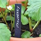 large-plant-labels