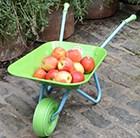 childrens-green-wacky-wheelbarrow