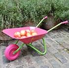 childrens-pink-wacky-wheelbarrow